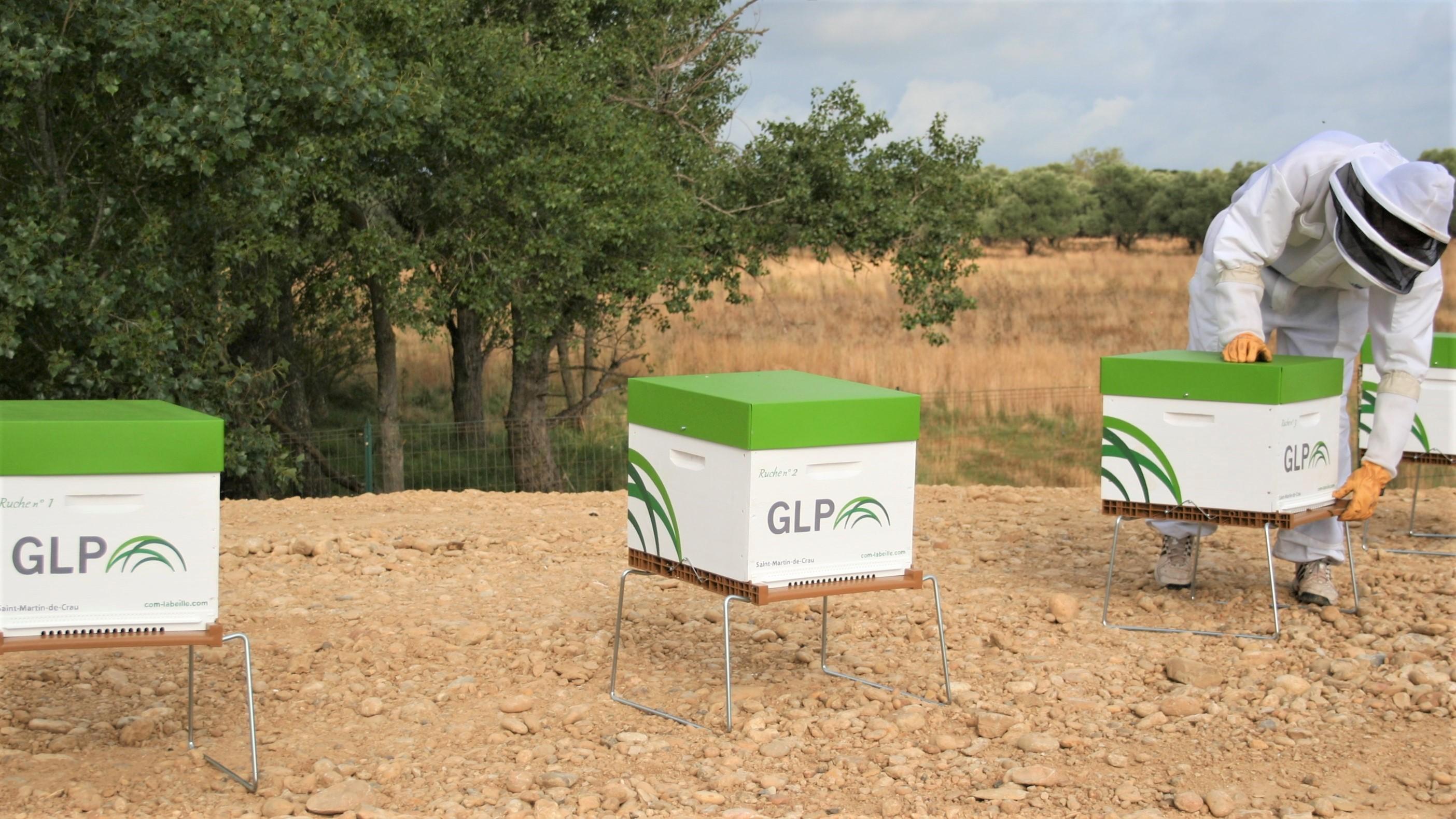 Installation Rucher GLP sur site 1-2